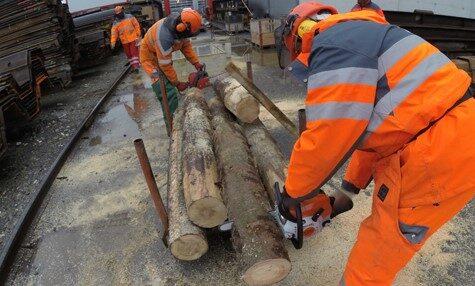 Bauarbeiter sägt Baumstämme mit Kettensäge
